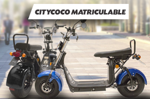 Citycoco Matriculable